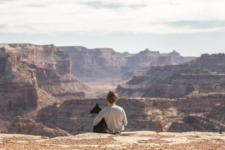 Bring Fido to the dog-friendly Grand Canyon.