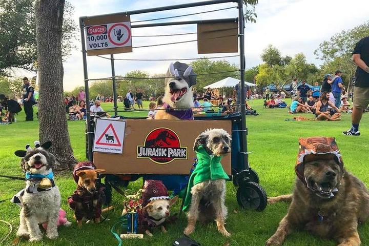 Visit Phoenix, AZ to Attend the Dog-Friendly Halloween Parade.
