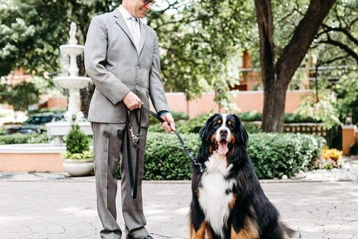 Rosewood Mansion on Turtle Creek in Dallas, TX is a Super Pet-Friendly Hotel In the South