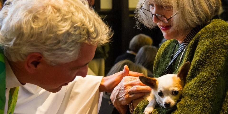 Bring Your Dog to a Pet Blessing on Saint Francis of Assisi Day.