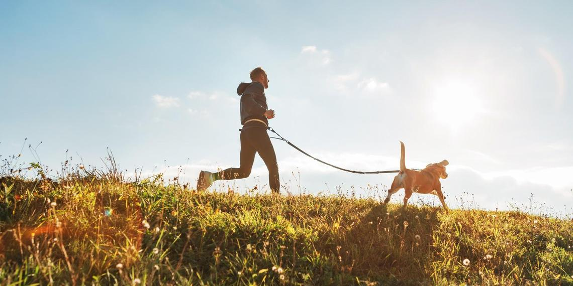 Learn about Canicross and discover 8 pet-friendly trails where you can run with Fido.