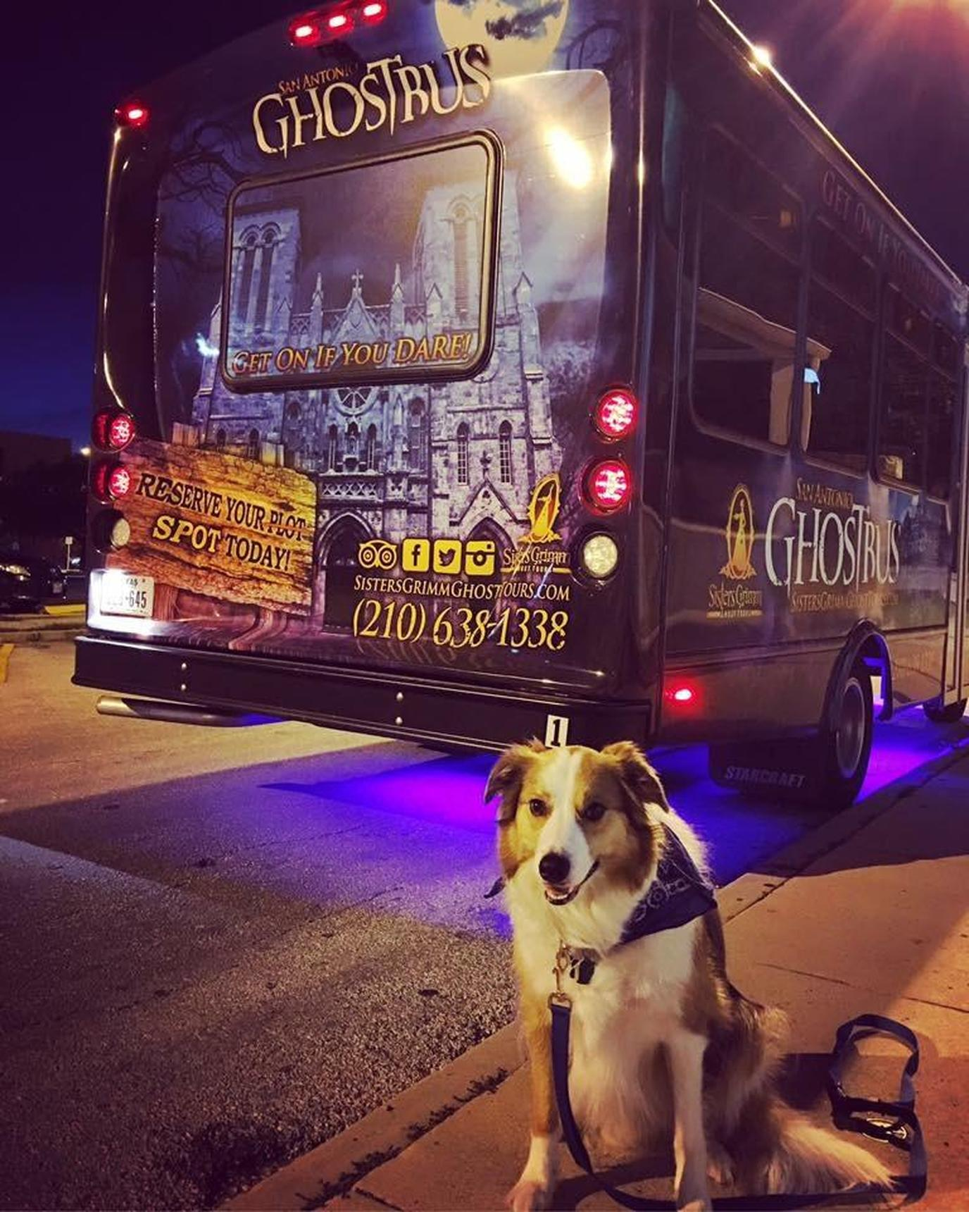 Pet-friendly Sisters Grimm Ghost Tours include the Alamo and more in San Antonio.