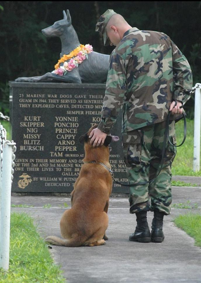 The National War Dog Cemetery on the grounds of Naval Base Guam.