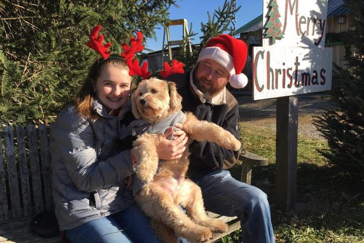 Baldwin Farms Is a Pet-Friendly Christmas Tree Farm in Richmond, Kentucky.