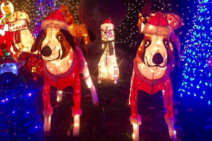 8 Doggone Beautiful Christmas Light Displays To Visit This Year