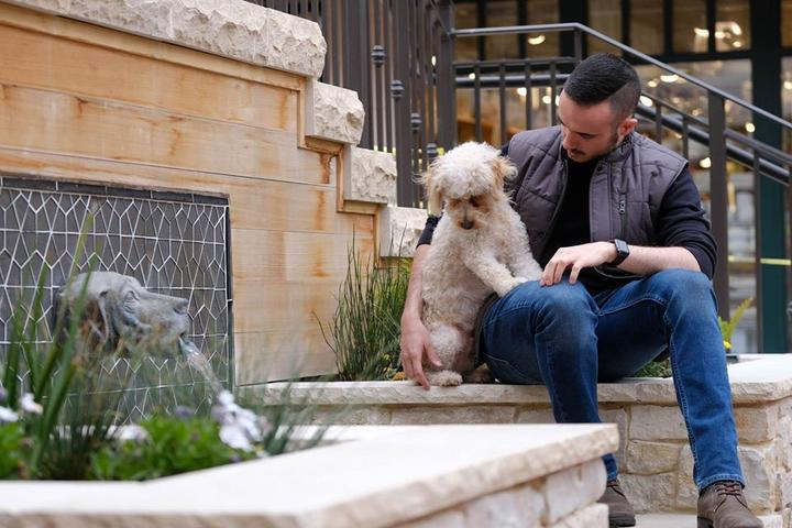 Many of the boutique stores, art galleries and restaurant patios welcome dogs at Carmel Plaza mall.