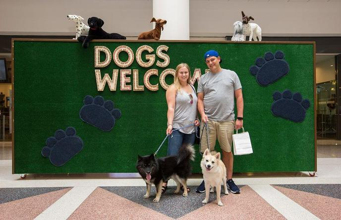 Yorktown Center is a popular dog-friendly shopping mall in Chicago's western suburbs.