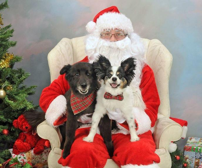 Picture Your Pets with Santa at Feeders Supply stores supports animal rescues.