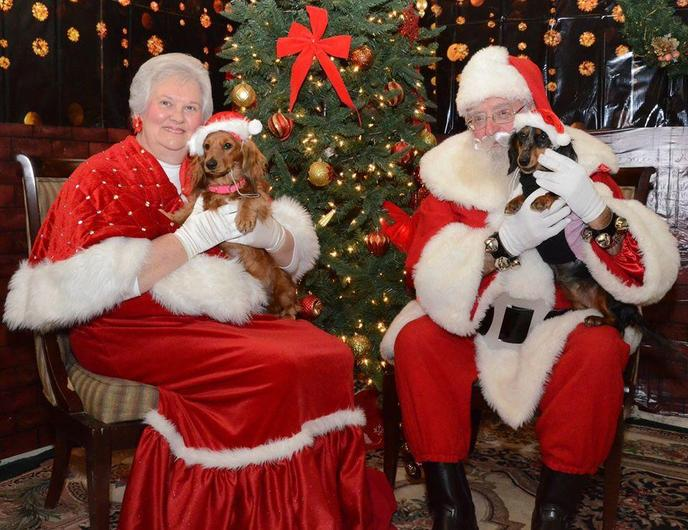 Check with your local Pet Supplies Plus location for info on pet pics with Santa Claus.