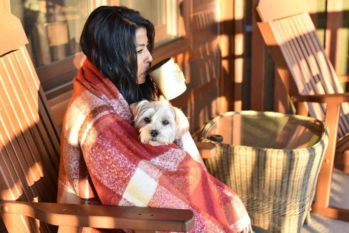 Treat your dog to a wonderful and safe Thanksgiving holiday.