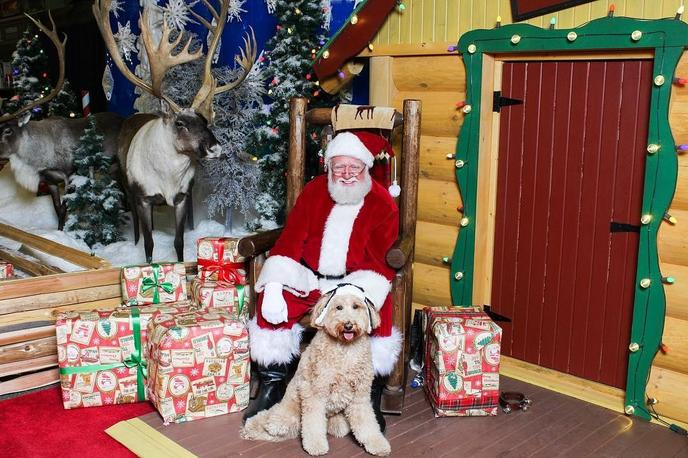 Santa's Wonderland at Bass Pro Shops and Cabela's welcomes dogs for pics with Santa.