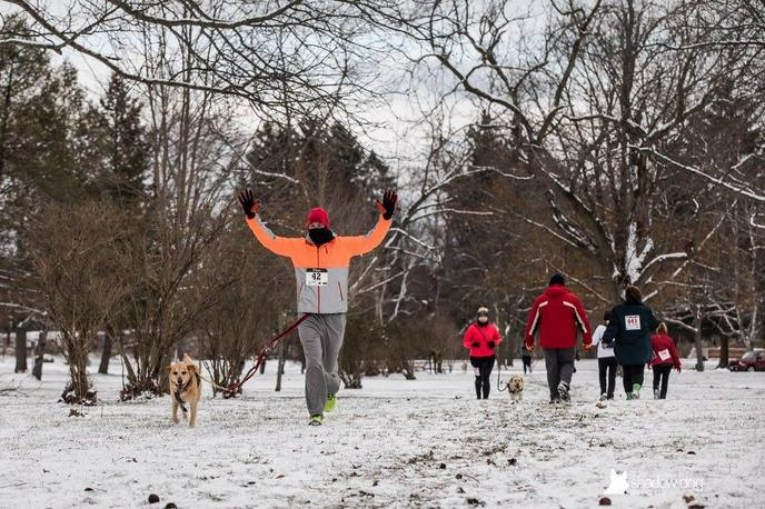 A Man and Dog Compete in a Canicross Race at a Dog-Friendly Event in Lake Geneva.