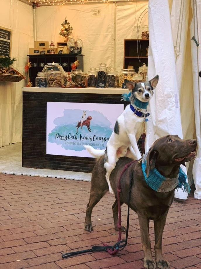 Two Dogs Stand Beside Their Vendor Stall at the Dog-Friendly Christmas Market in Philadelphia.
