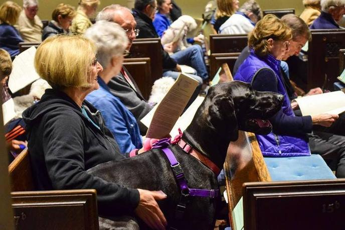 A Woman Sits in a Pew With Her Dog at a Pet-Friendly Church Service in Rumson.