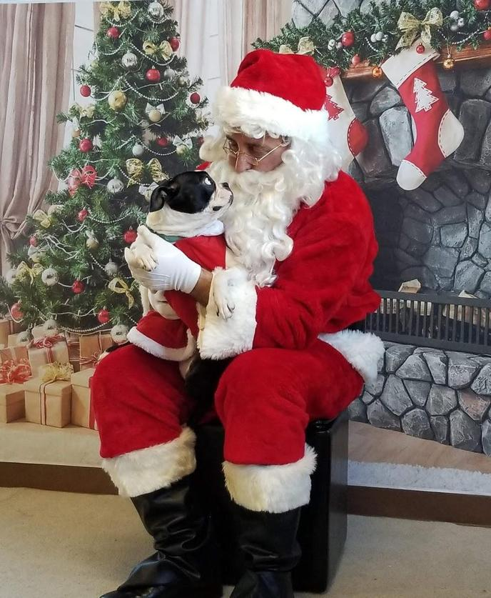 helters and Non-Profits Host Pet Pics with Santa Claus for a Cause.