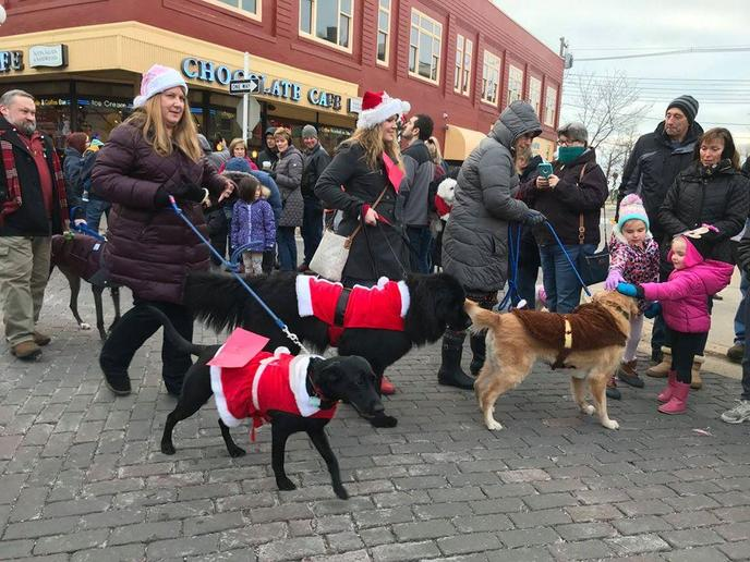 Dogs Dressed in Santa Costumes Walk in the Annual Reindog Holiday Parade in Saint Joseph.