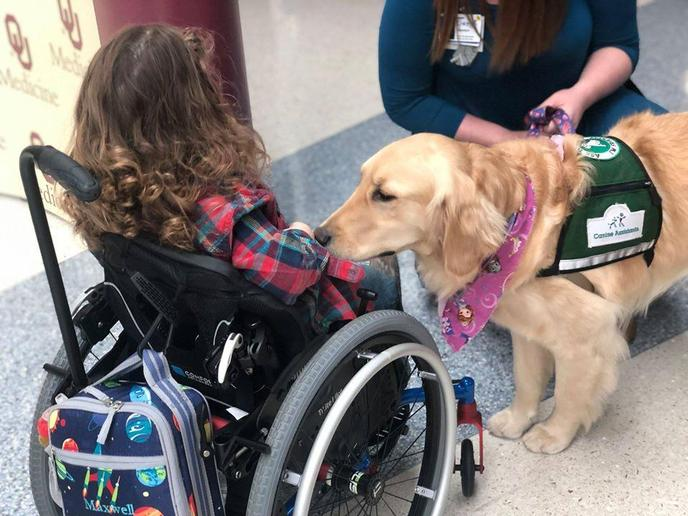 A Therapy Dog Visits a Girl in the Hospital.
