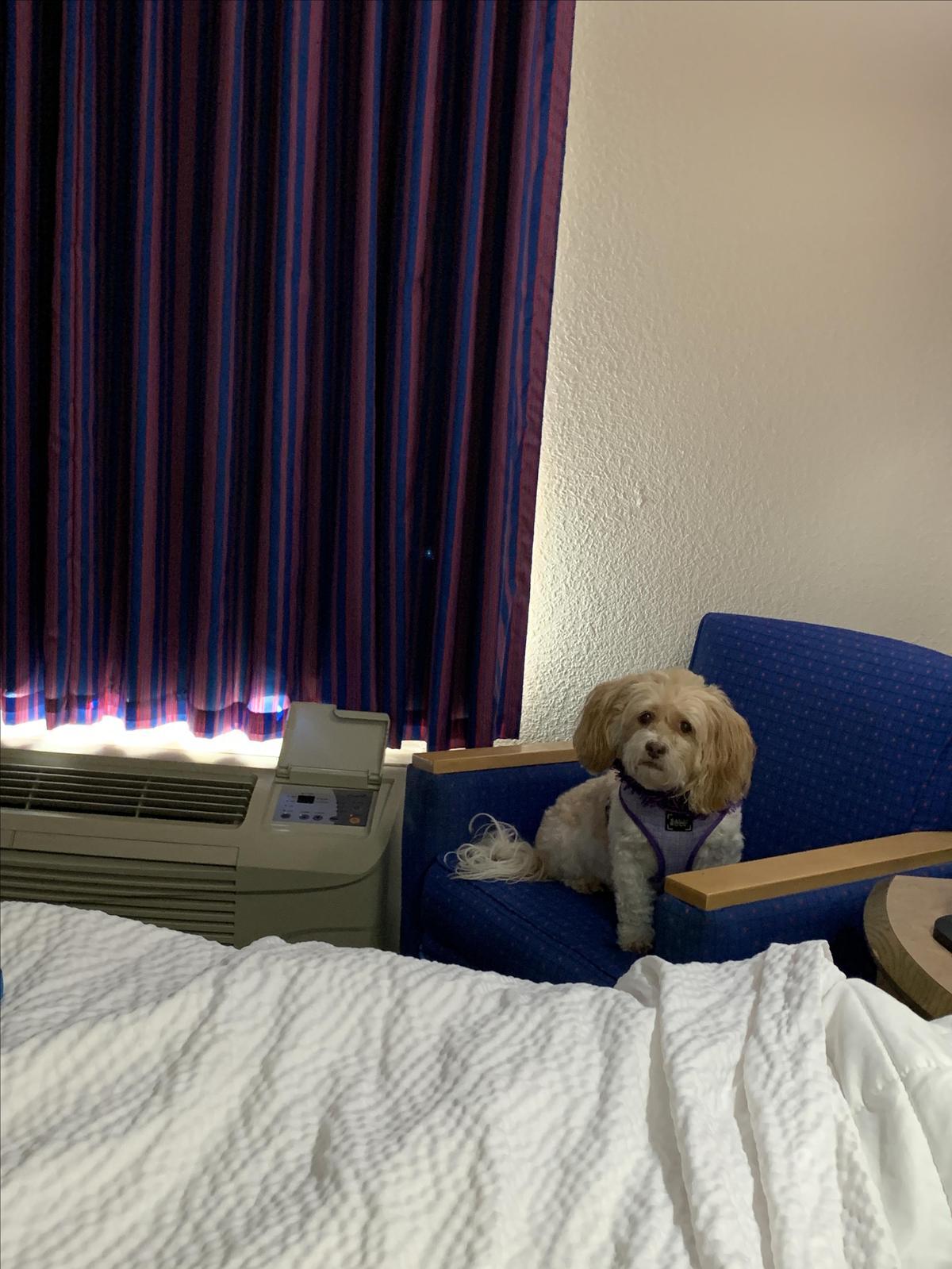 Chloe Found Her Spot