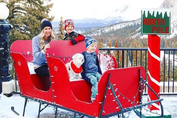 A Family Sits in a Sleigh With Their Dog at a Pet-Friendly Resort in Banff National Park.