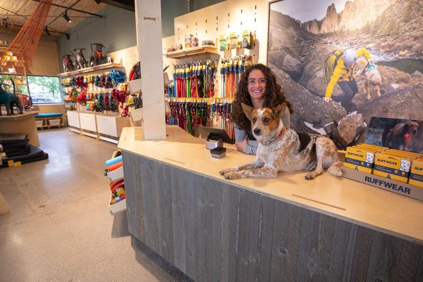 A Dog Sits on the Counter at Ruffwear While he Waits on Cyber Monday Pet Deals.