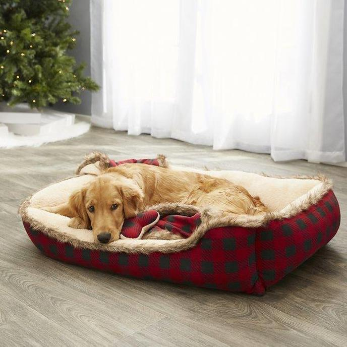 A Retriever Sleeps in a Cuddler Pet Bed & Gift Set.