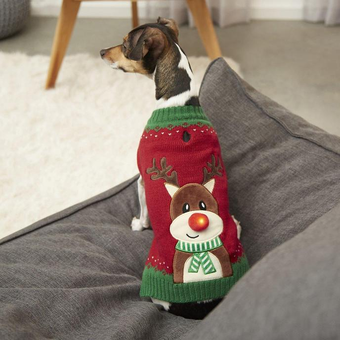 A Holiday Gift for Pets Featuring a Pet Sweater With Rudolph on the Back.