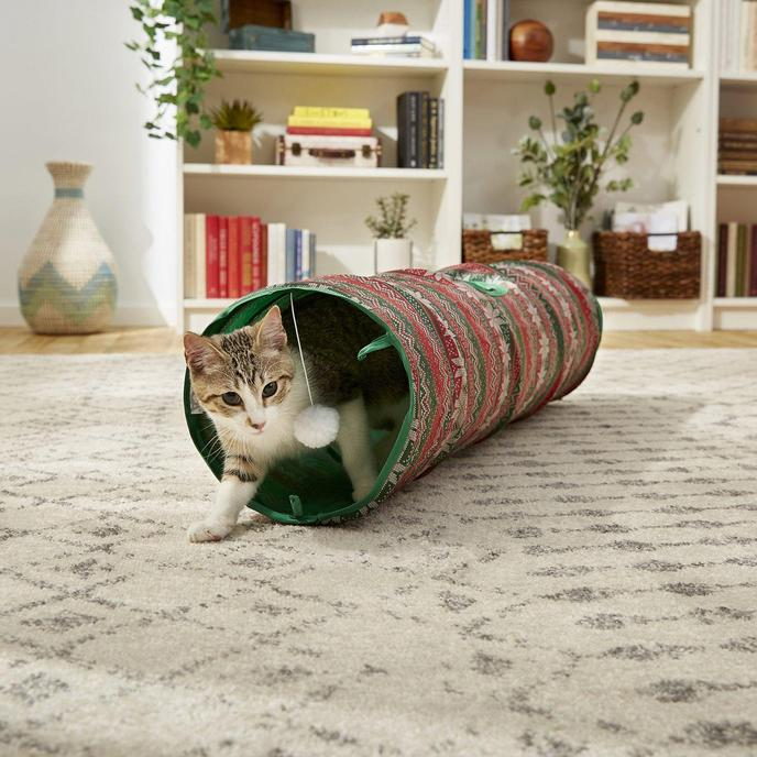 A Kitten Runs Through the Ugly Sweater Holiday Cat Tunnel.