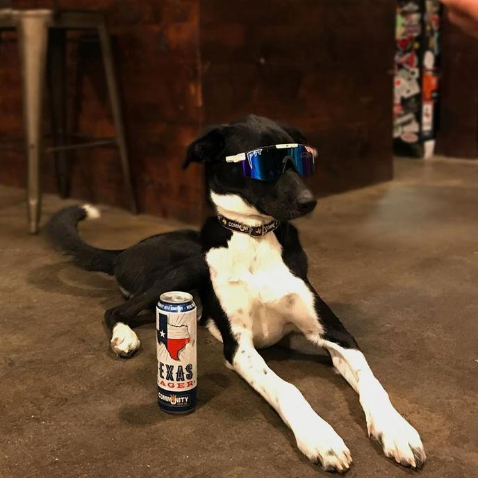 Community Beer Co. pet-friendly craft beer taproom in Dallas hosts a Shop Small Saturday event.