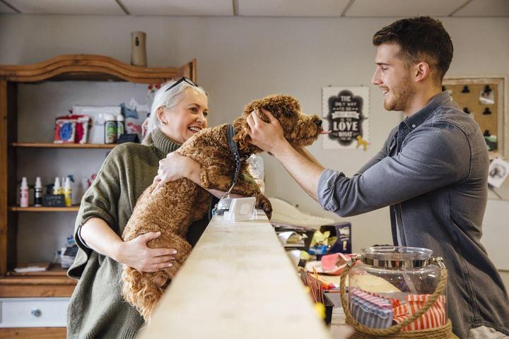 Shop small with your dog on Small Business Saturday.
