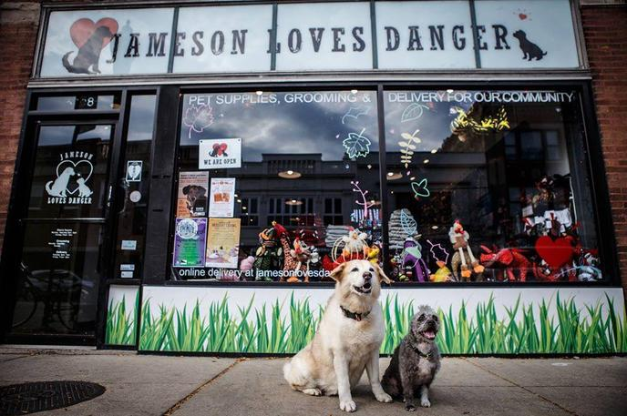 Shop local with your dog  in the Andersonville neighborhood of Chicago.