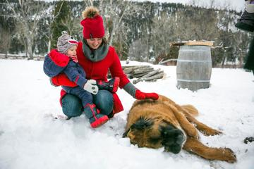 A Woman and Child Sit With Dog in Snow at a Pet-Friendly Ranch.