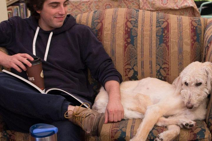 """Reading Is """"Fidomental:"""" 10 Dog-Friendly Bookstores to Visit"""