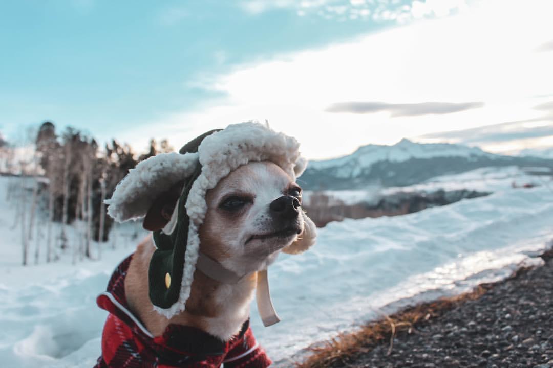 Enjoying the snow in Telluride