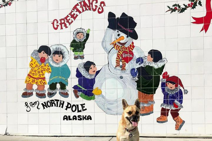 A Dog Stands in Front of a Snowman Mural in North Pole, AK.