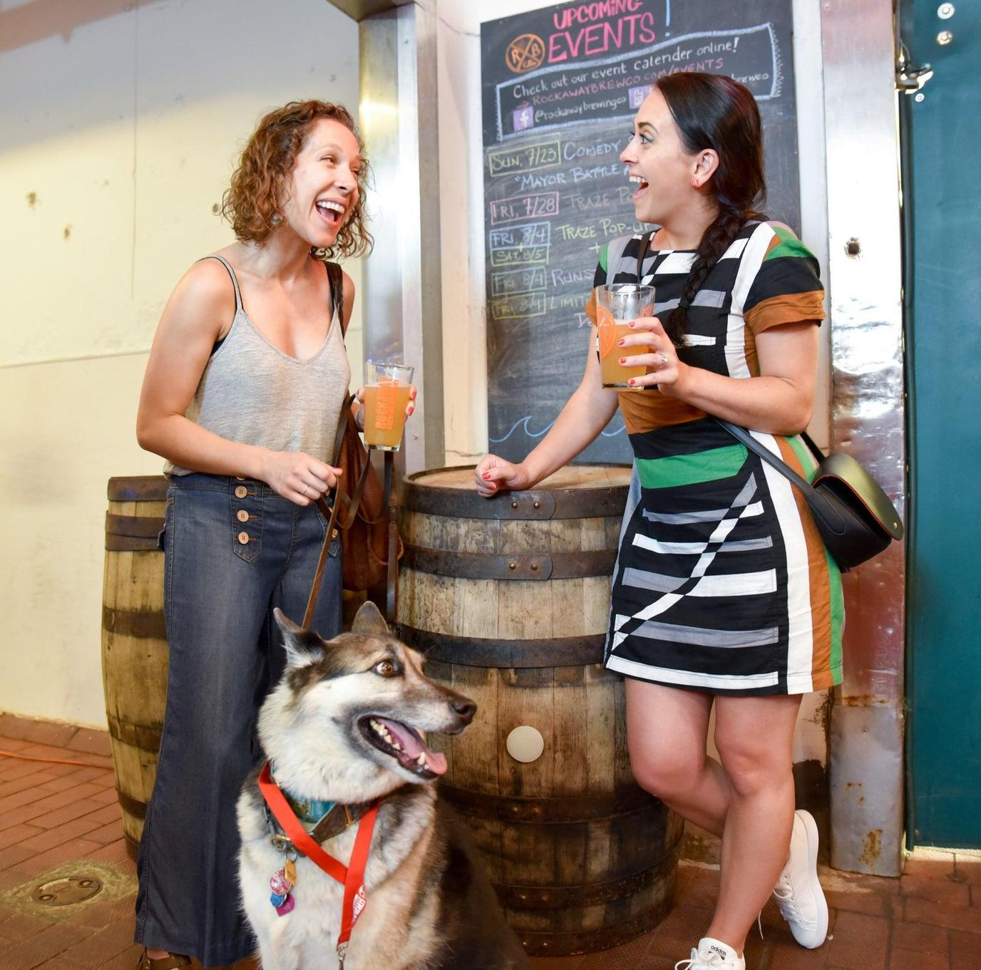 A Dog Sits in a Brewery With Two Women During a Pet-Friendly Airbnb Experience in New York City.
