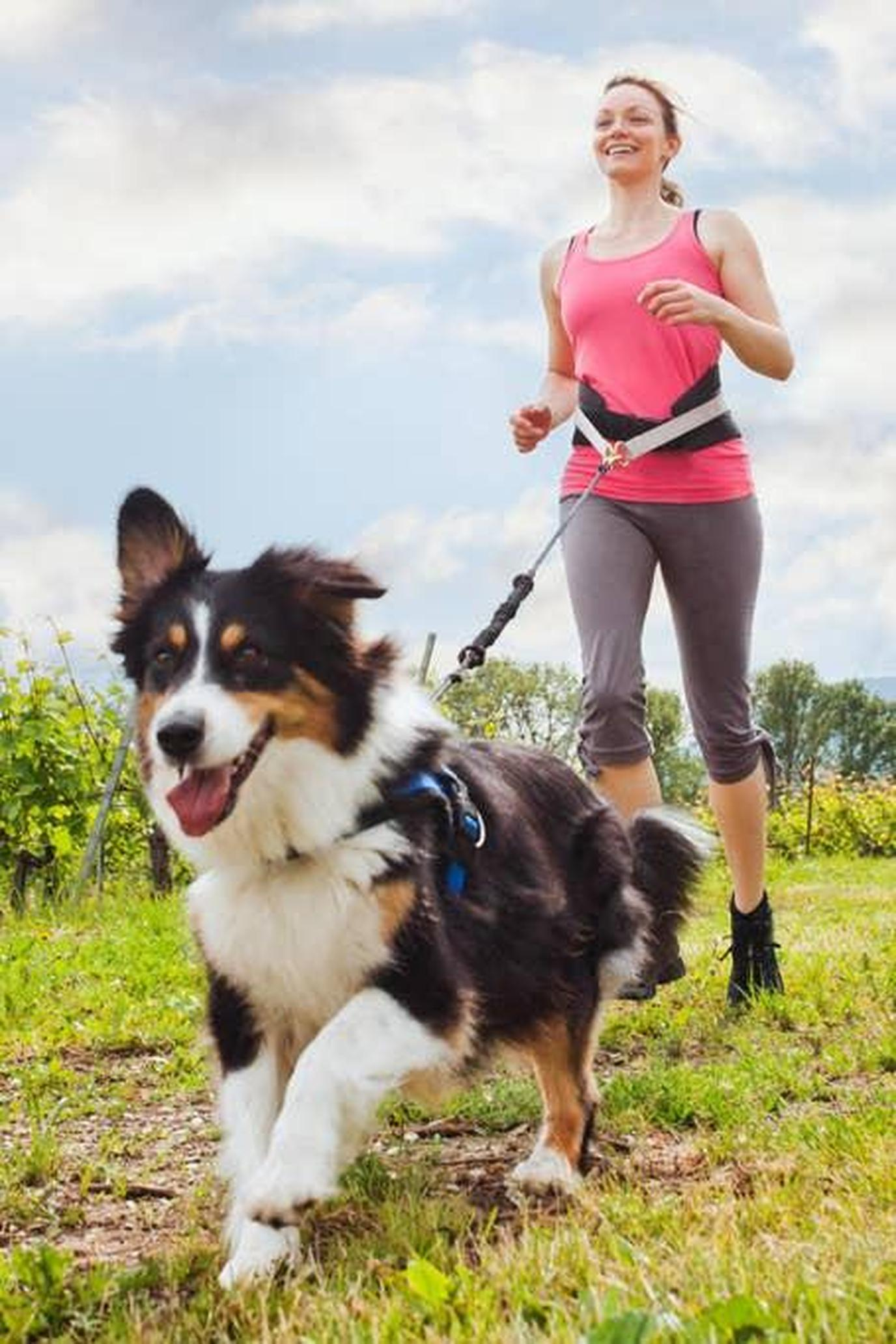 A Woman Runs With a Dog Tethered to Her Waist During a Canicross Run.