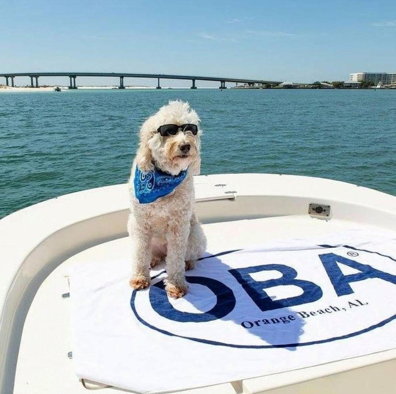 A Dog Wears a Bandanna and Sunglasses While Sitting on a White Boat in the Ocean.