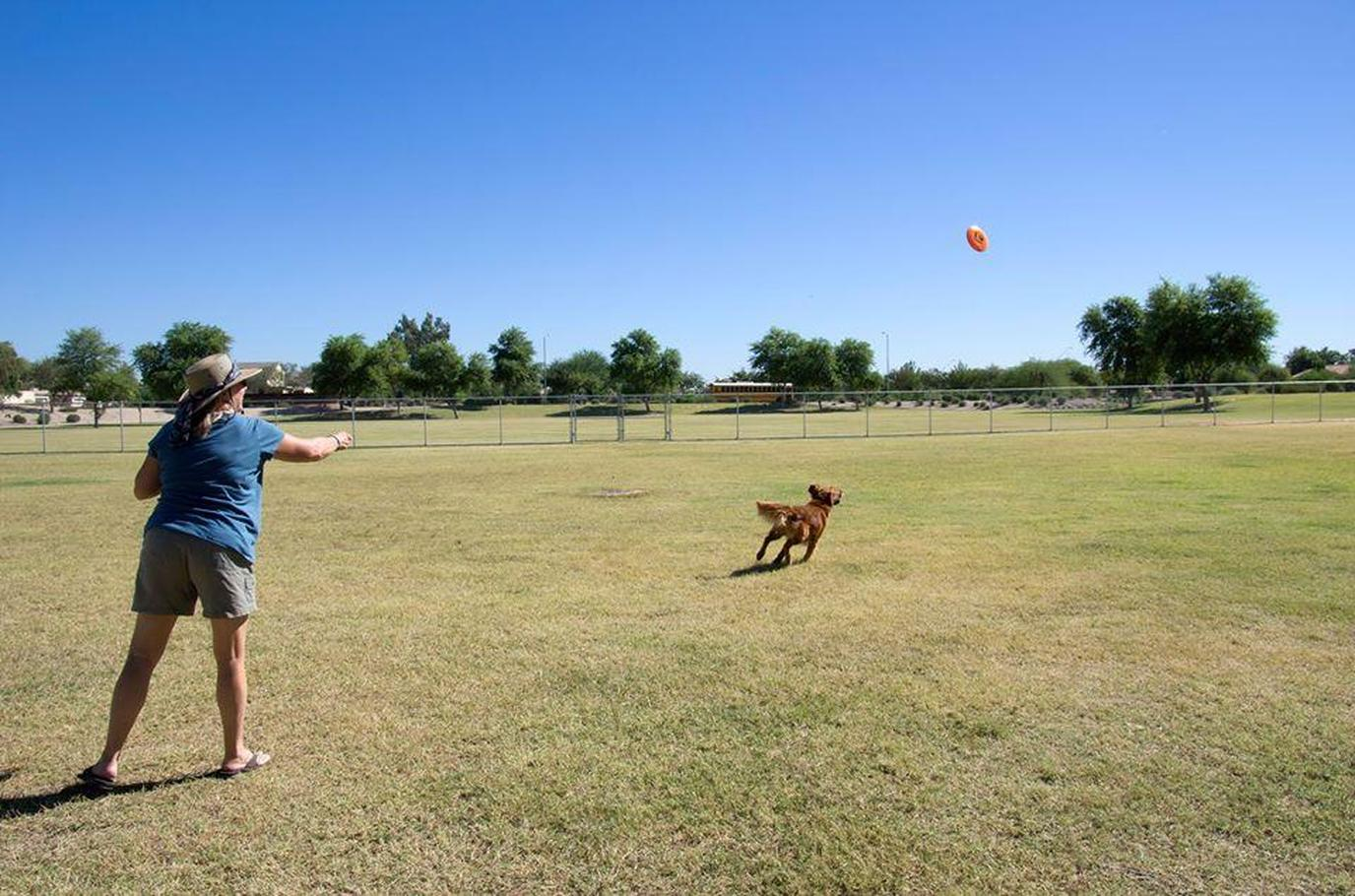 A Woman and Dog Play Frisbee at a Dog Park in Pet-Friendly Peoria.