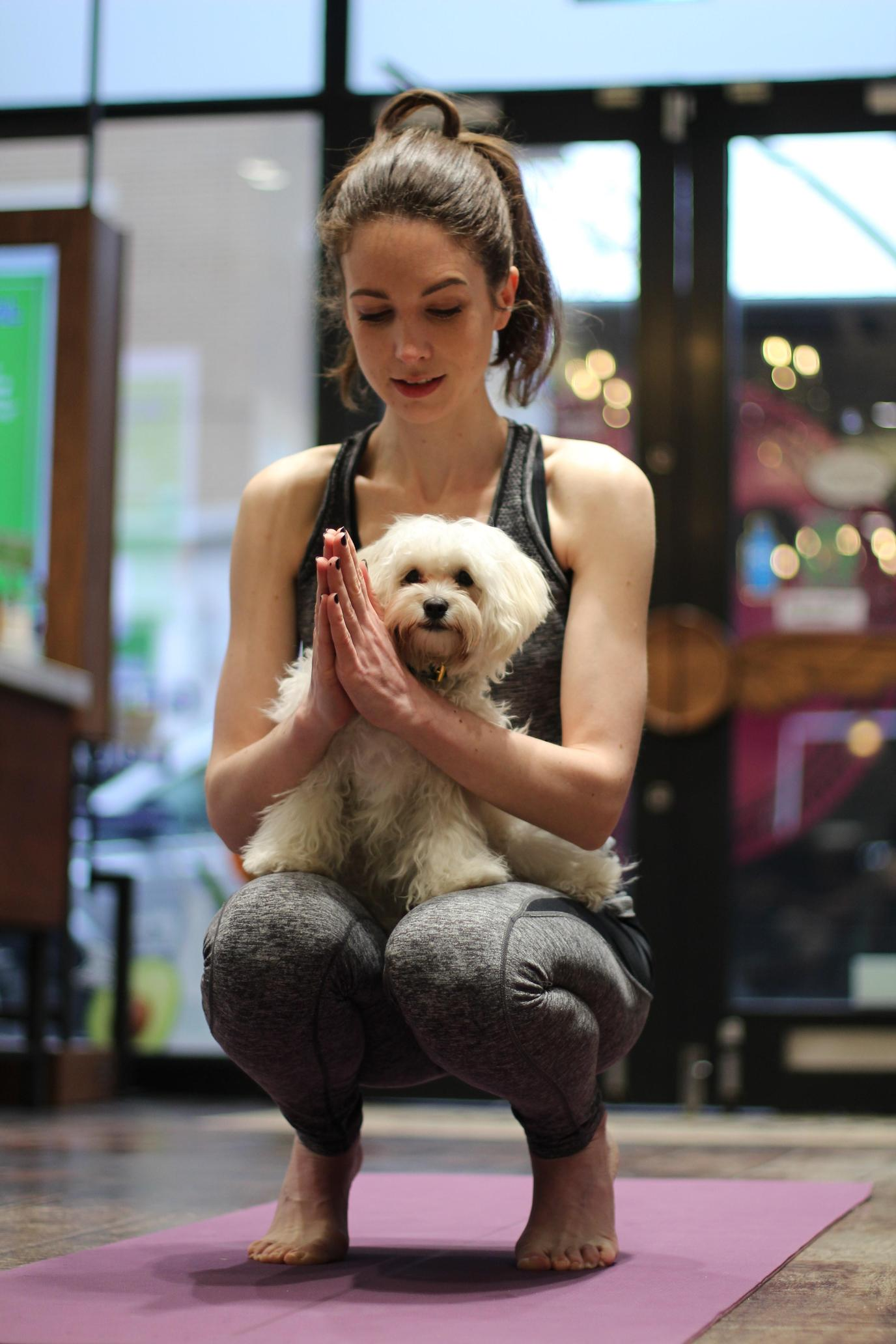 Sign up for Doga classes with your pup.