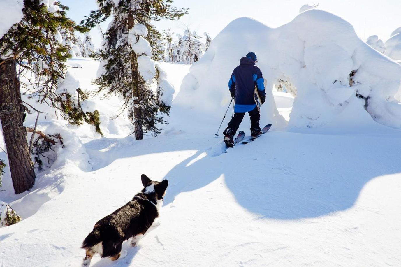 Snow Igloo on Lucky Ranch is a pet-friendly vacation rental in the province of Lapland.