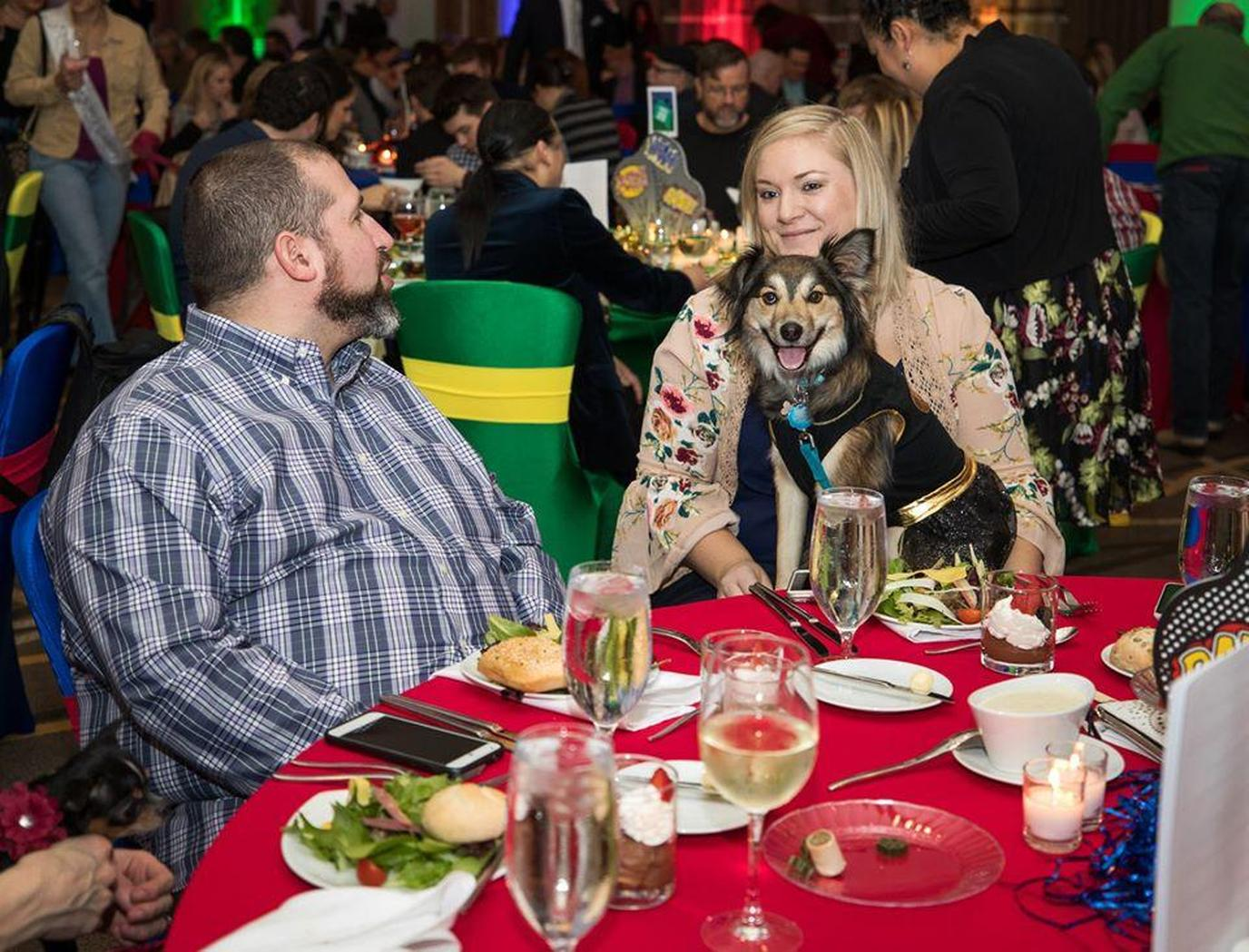 A Couple Has Dinner With Their Dogs During a Pet-Friendly Event in Nashville.