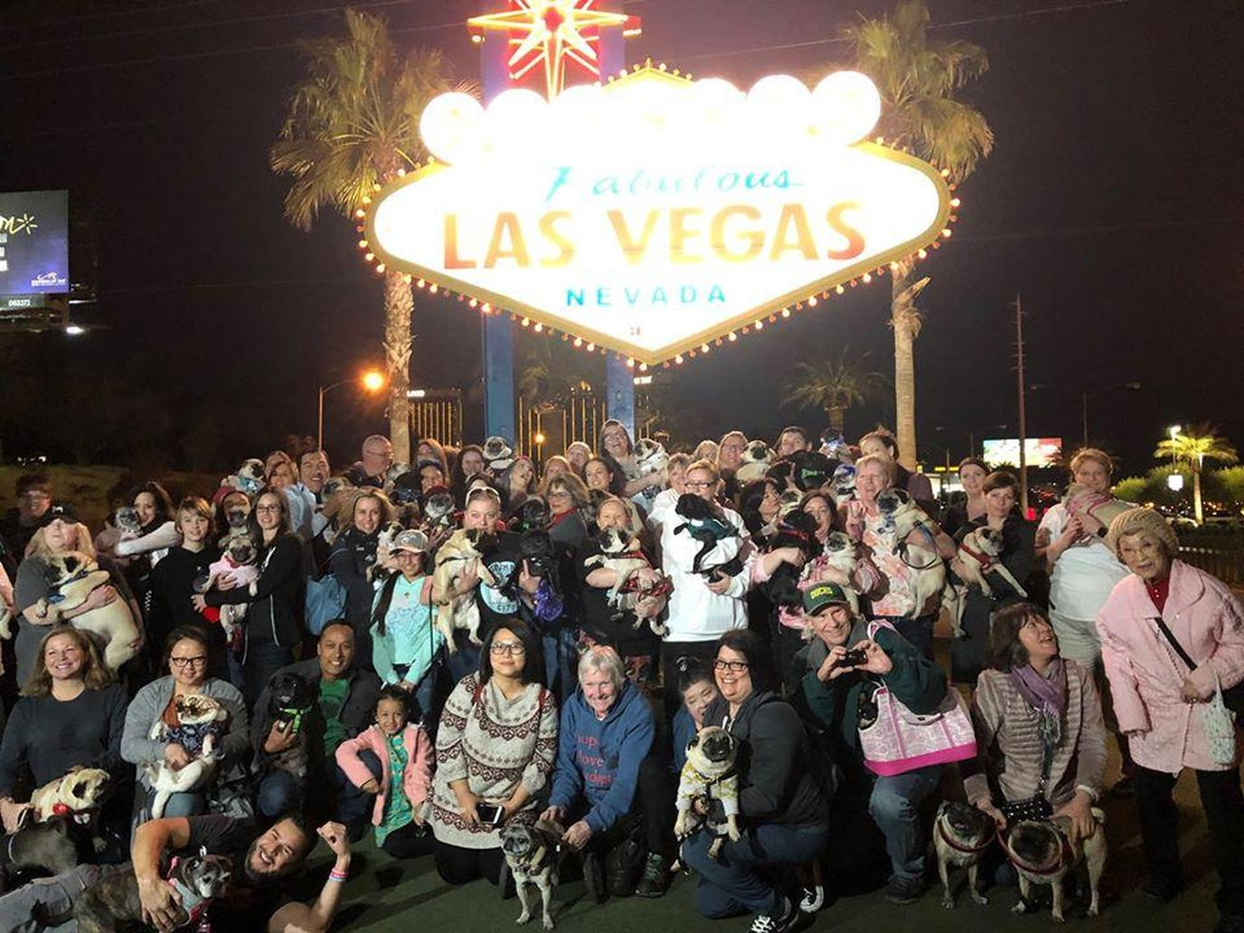 A Group of People Pose in Front of the Las Vegas Sign With Their Pugs.