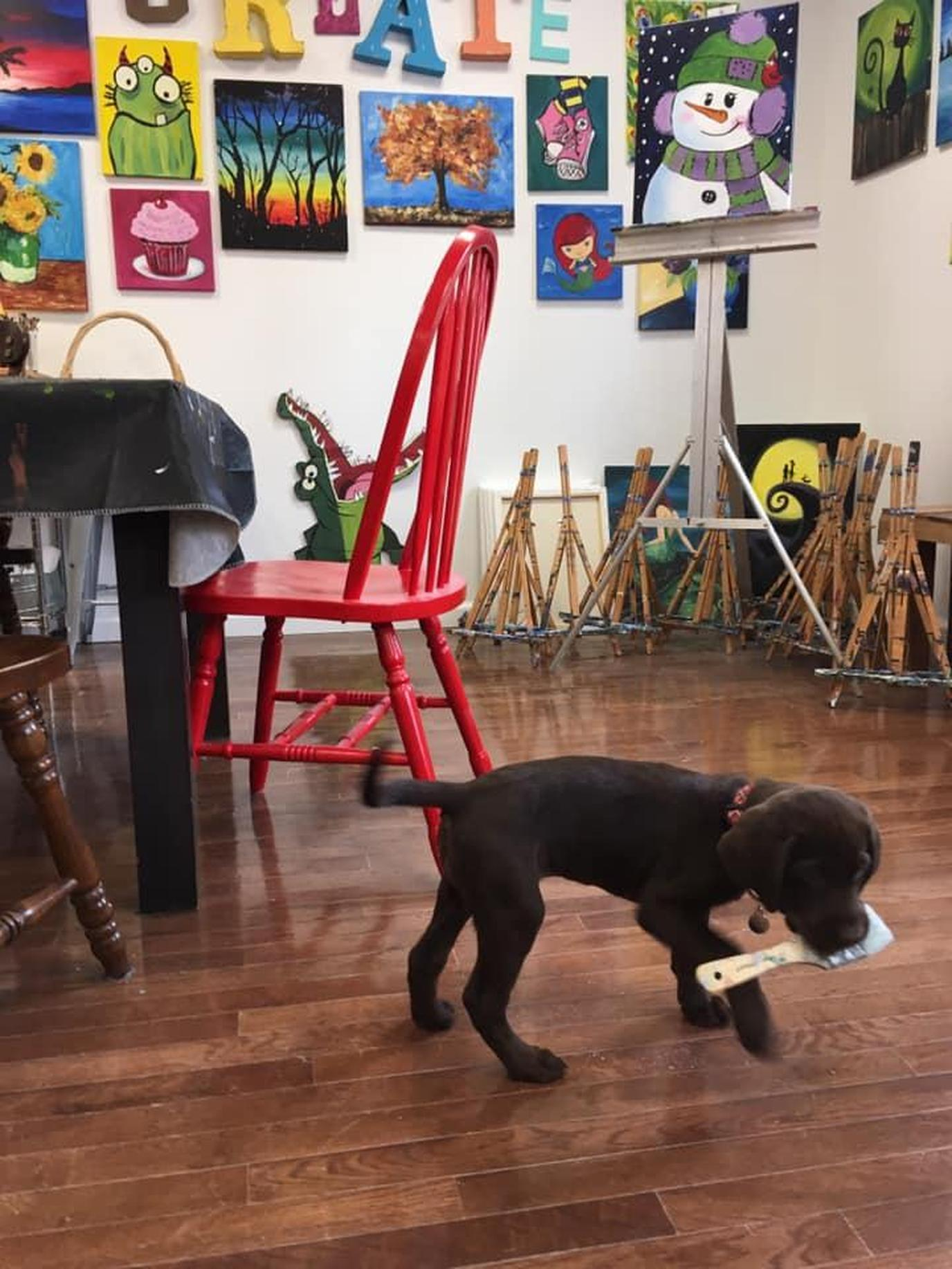 Leaping Dog Art Studios offers pet-friendly drawing lesons, pottery workshops and art parties.