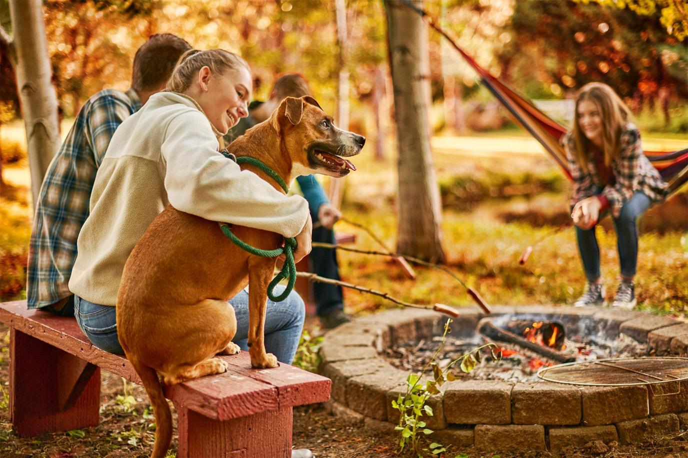 A Family Sits Around a Fire Pit With Their Dog.