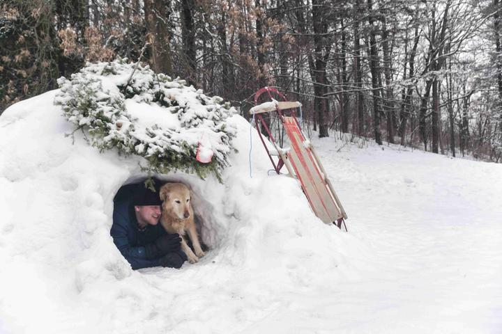 Huddle With Your Husky in a Pet-Friendly Igloo