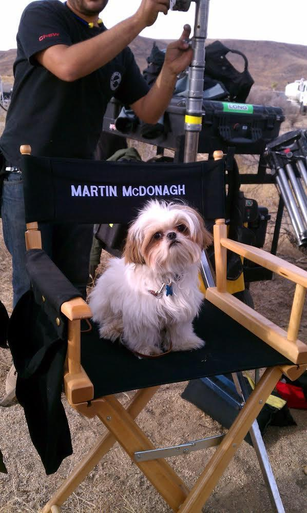 """Hooray for """"Howlywood:"""" An Interview With a Canine Movie Star"""