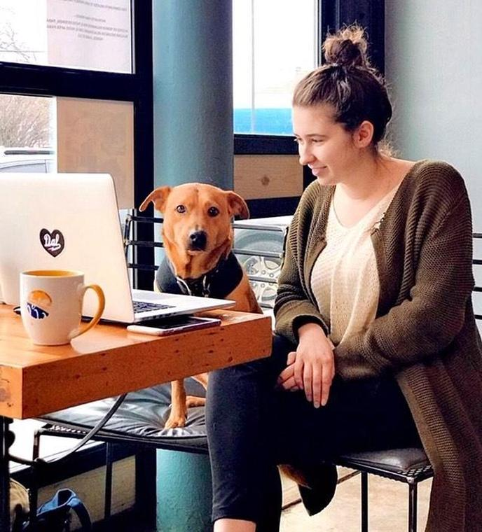 A Woman Sits With Her Laptop and a Dog at a Pet-Friendly Coffee Shop in Dallas.