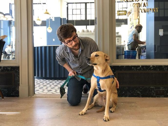 A Man Pets His Dog Outside of a Pet-Friendly Coffee Shop in Spartanburg.
