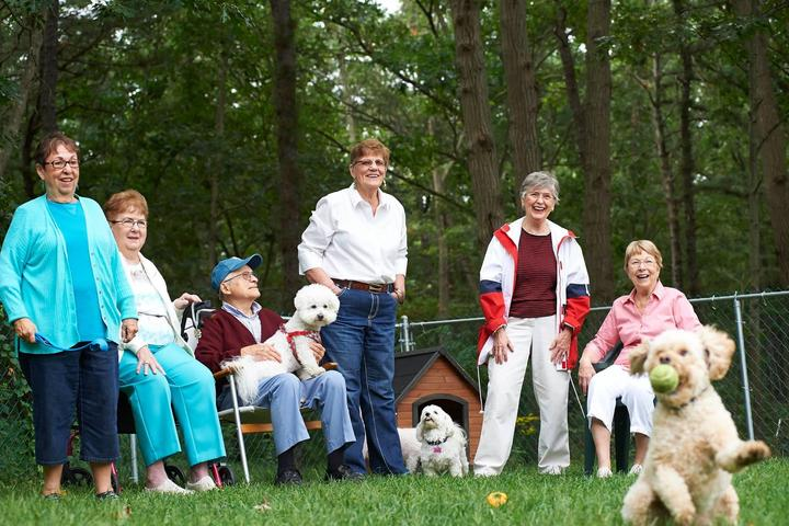 Group of Seniors at Pet-Friendly Assisted Living Facility Play With Their Dogs at the Dog Park.