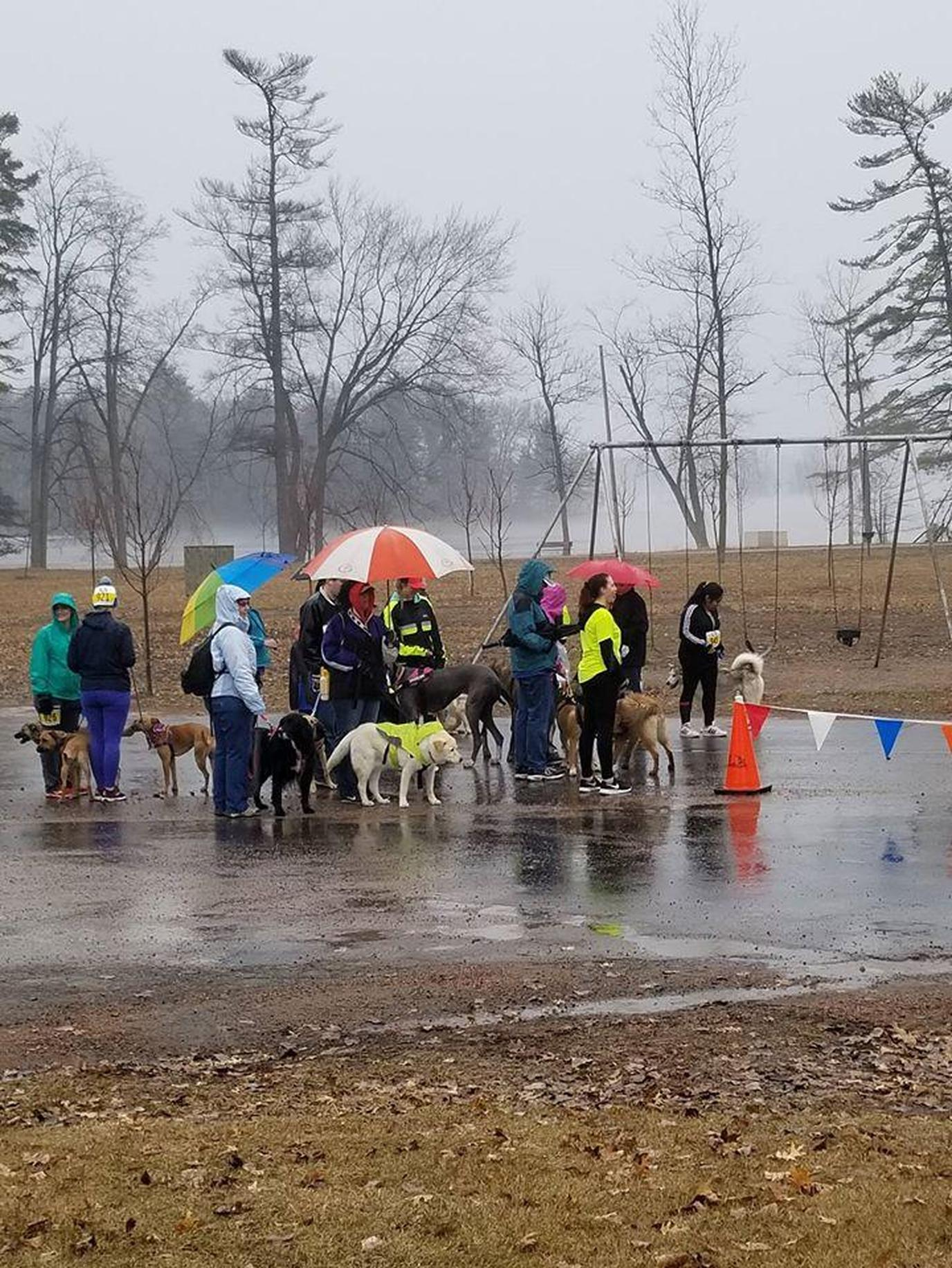 A Group of Participants Prepare to Run in the Rain During a Pet-Friendly Spring Run in Wisonsin.